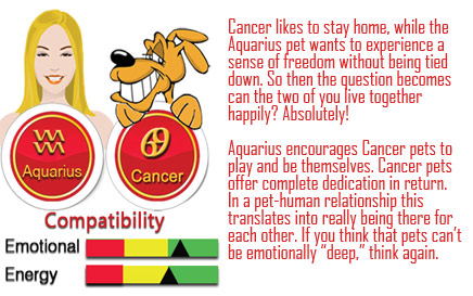 aquarius and cancer relationship